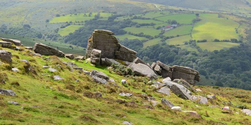Dartmoor - Devon